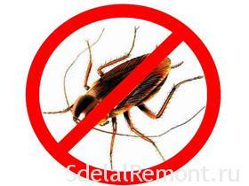 Как избавиться от тараканов в квартире фото таракан