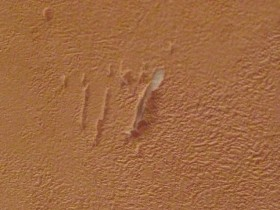 Scratches on wallpaper